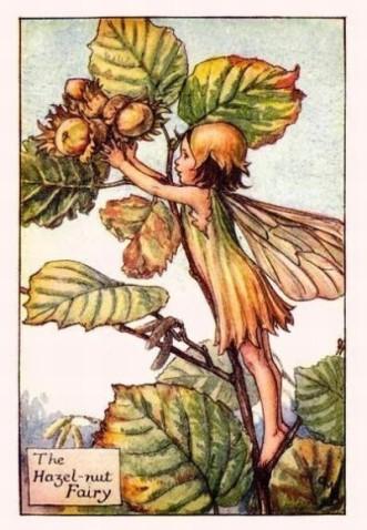 The Hazel-nut Fairy.