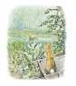 Peter Rabbit spies the gate and Mr. McGregor