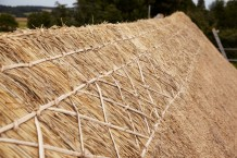 ornamental thatch ridge